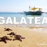 galatea cover2
