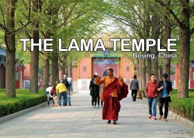 The Lama Temple | Beijing, China