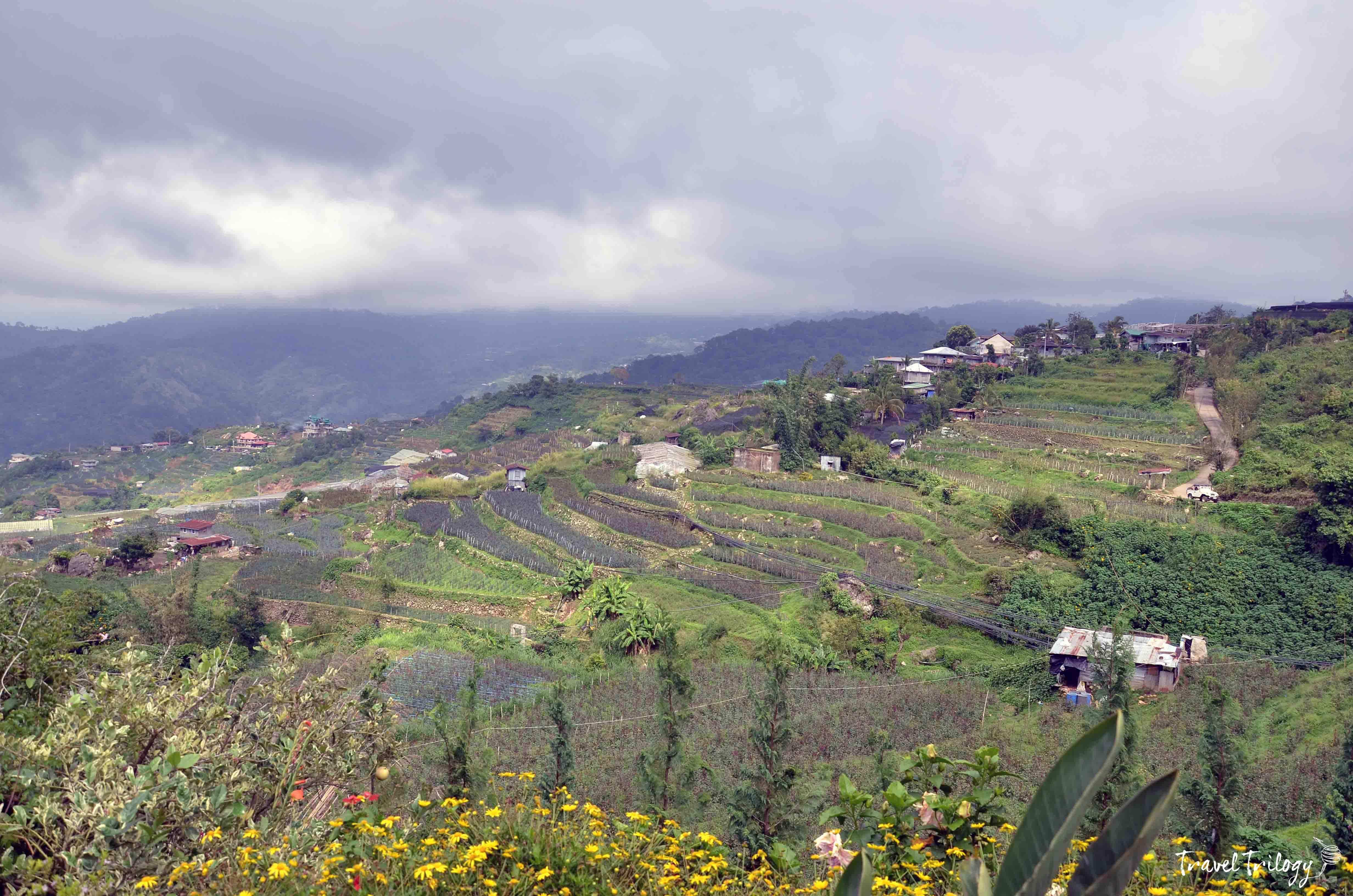 bahong la trinidad benguet