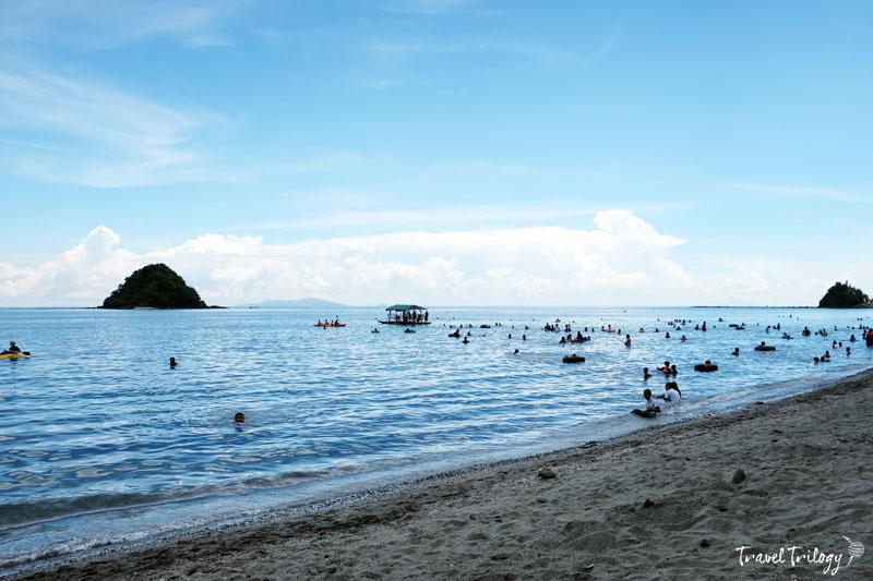 calbayog pawikan island