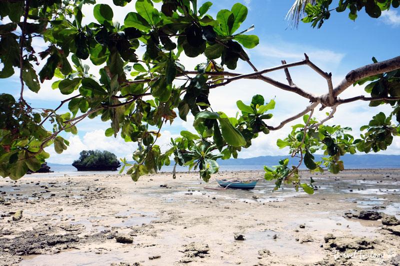paguriran island 5
