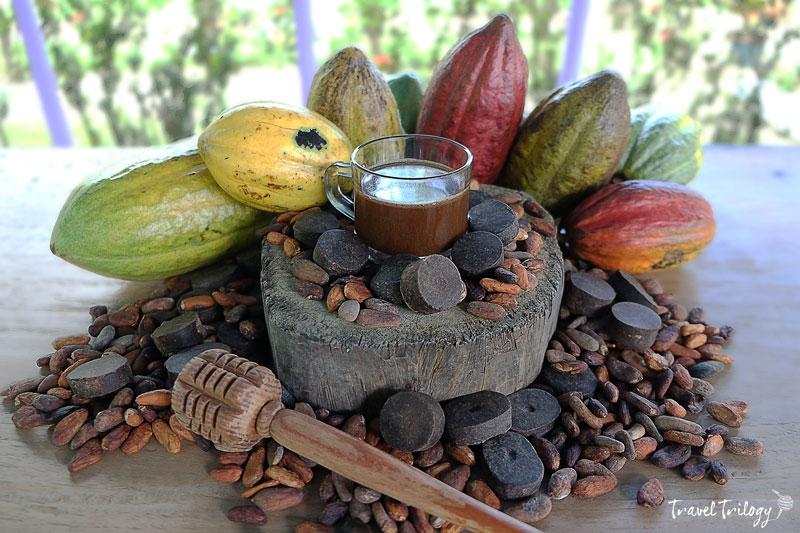 alabat cacao