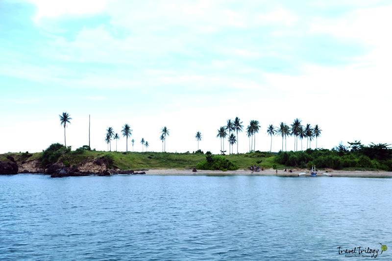punta island tabaco